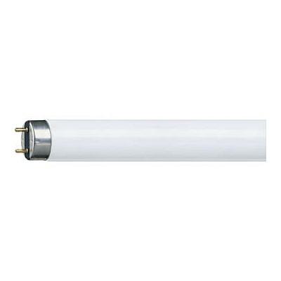 PHILIPS MASTER TL-D Super 80 58W/865 Blanc lumière du jour 6500k  1SL