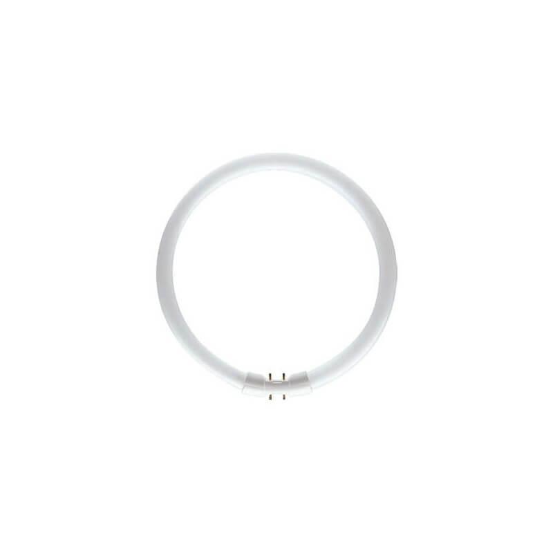 PHILIPS MASTER TL5 Circular 55W/830 1CT
