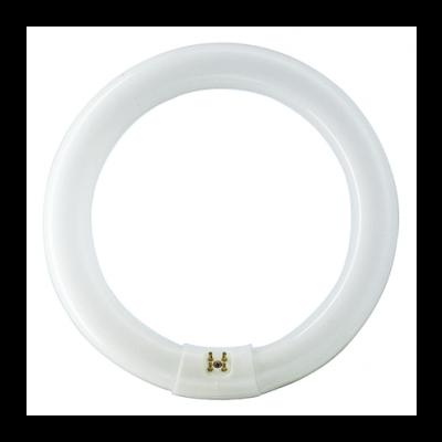 Philips MASTER TL-E Circulaire Super 80 22W/840 Culot : G10Q