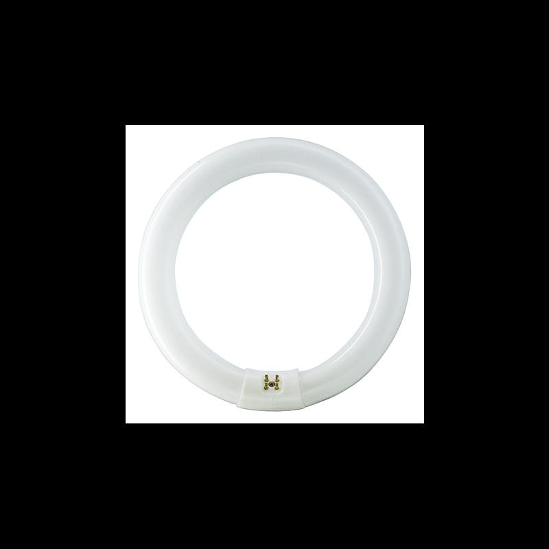 Philips MASTER TL-E Circulaire Super 80 40W/865 1CT