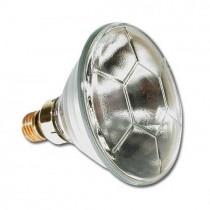 Lampe PAR 38 24V 120W Philips E27