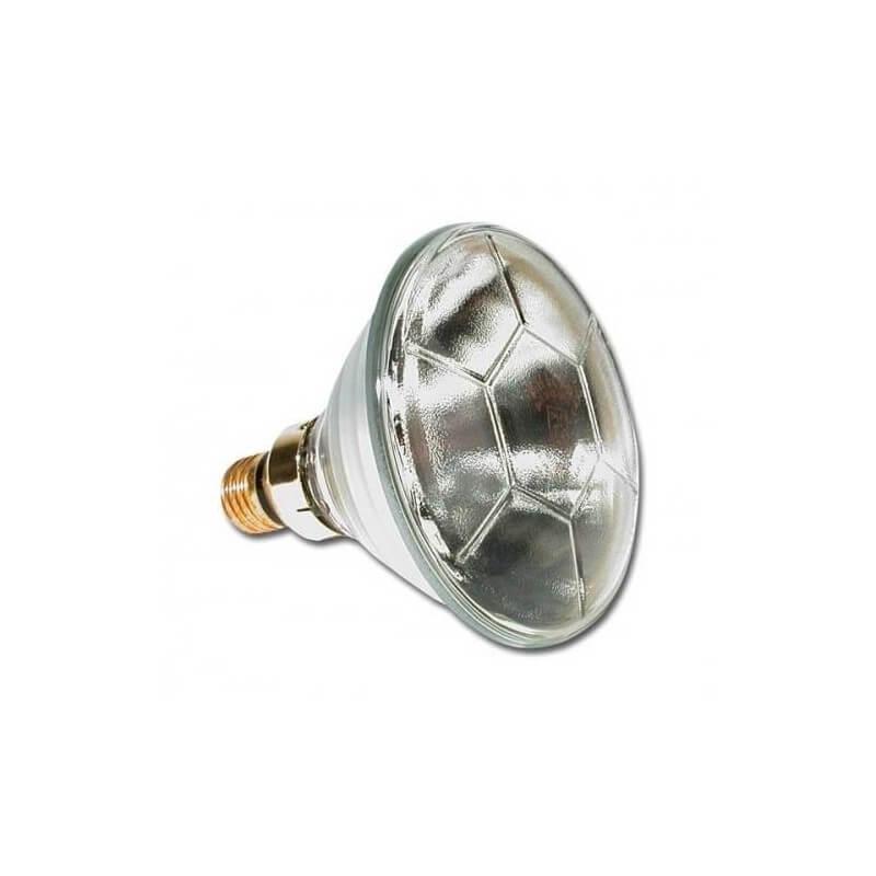 Lampe par 38 24v 120w philips pour bassin e27 for Lampes exterieur philips