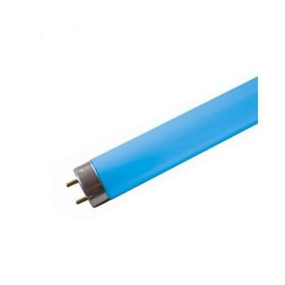 Tube neon fluorescent 18w bleu T8 0,600m