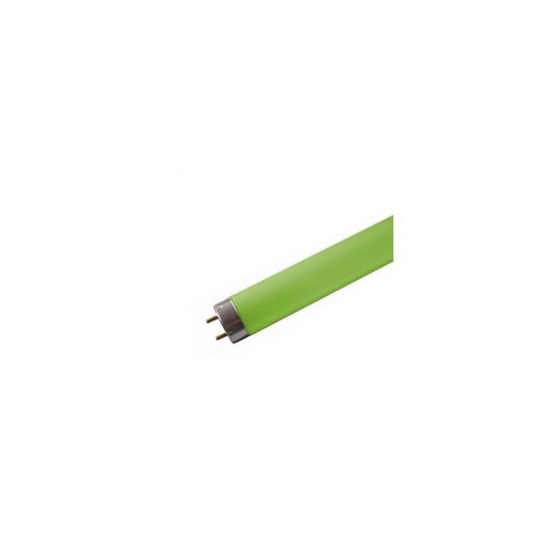 Tube neon fluorescent 18w vert T8 0,600m