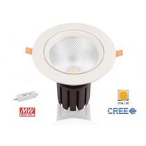 Downlight LED Driver Meanwell inclus 55W 4000k Blanc Froid 5500lm diamétre de perçage 210mm