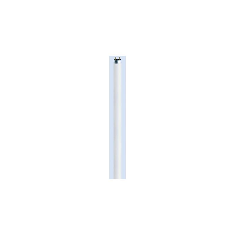 OSRAM LUMILUX MINI T5 13W/840 G5 13W / 840 BLANC FROID pour tube T5
