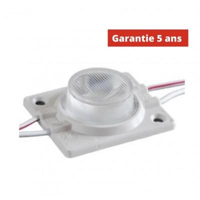 Chaîne de 30 modules LED 1.52W/Module Blanc 6500k 12V  IP67