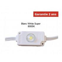 Chaine de 100 modules led Blanc White Super 8000K 24w/ 12v étanche IP67