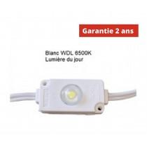 Chaine de 100 modules led Blanc WDL 24w/ 12v 6500K étanche IP67
