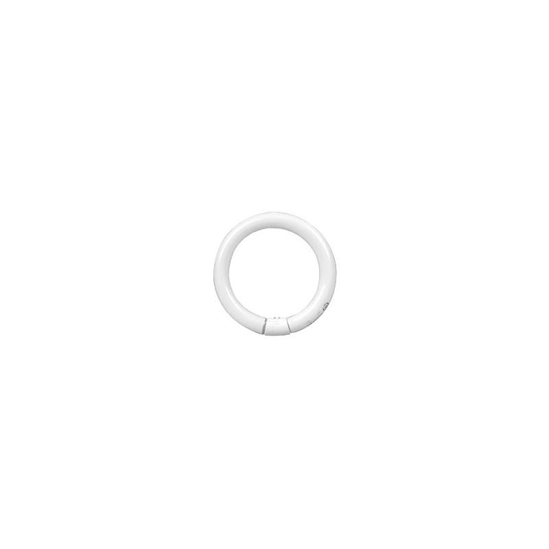 Philips TL-E Circular 40W/33-640 1CT 284549