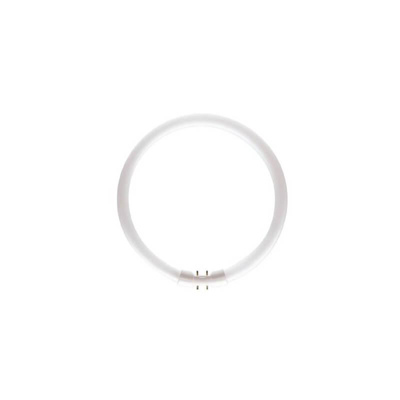 Philips MASTER TL5 Circular 22W/830 1CT culot:2G13