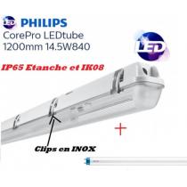 Réglette 1*T8 avec tube Philips 14,5W 1600 lumens Blanc froid 4000K IK08 IP65 étanche 1200mm